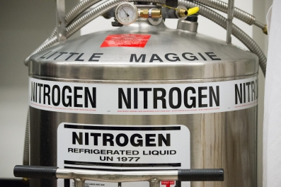 "Portable double walled vacuum insulated tanks such as ""Little Maggie"" is in a laboratory, holding liquid nitrogen used to begin the essential, safe cryogenic freezing process of samples that will be stored at -196 °C (-321 °F) in liquid storage and -193 C. (-315 °F) in vapor storage, at the U.S. Department of Agriculture (USDA) Agriculture Research Service (ARS) National Center for Genetic Resources Preservation (NCGRP), in Ft. Collins, CO, on Wednesday, Nov. 6, 2013. NCGRP is the largest agricultural genebank facility in the United States, and one of the largest in the world. The NCGRP staff conducts groundbreaking research to develop more efficient and effective means for preserving plant and animal germplasm, and for better understanding the genetic structure of these invaluable materials. The research findings, preservation techniques, and specialized technology developed by the NCGRP have been adopted by genebanks around the world: many international scientists travel to the NCGRP for research and training. The NCGRP staff conducts groundbreaking research to develop more efficient and effective means for preserving plant and animal germplasm, and for better understanding the genetic structure of these invaluable materials. The research findings, preservation techniques, and specialized technology developed by the NCGRP have been adopted by genebanks around the world: many international scientists travel to the NCGRP for research and training. The NCGRP staff includes 34 full-time USDA/ARS employees (7 of whom are Ph.D. level-scientists), plus 8 part-time and 16 student employees. The FY13 budget for the center is $4.7 million. For more information about U.S. Agriculture, NCGRP, and GRIN see www.usda.gov, http://www.ars.usda.gov/Aboutus/docs.htm?docid=17892, http://www.ars-grin.gov/ USDA photo by Lance Cheung."