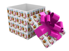 Fujifilm Imagine - gift wrapping box