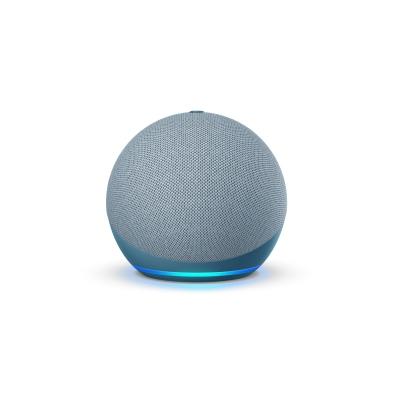 Echo Dot Product (1)